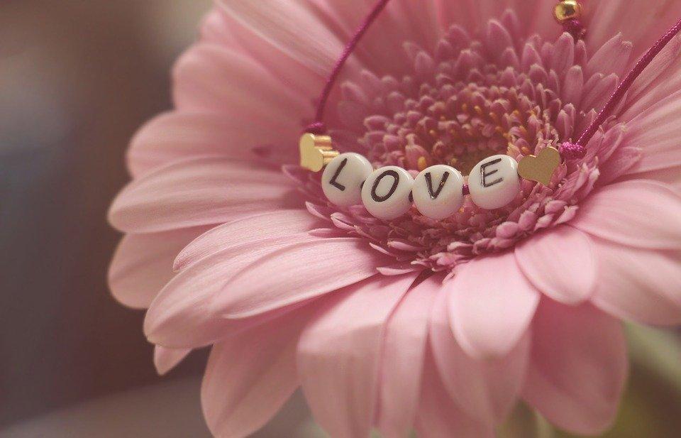 love-3388622_960_720