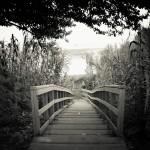 bridge-1967674_1920